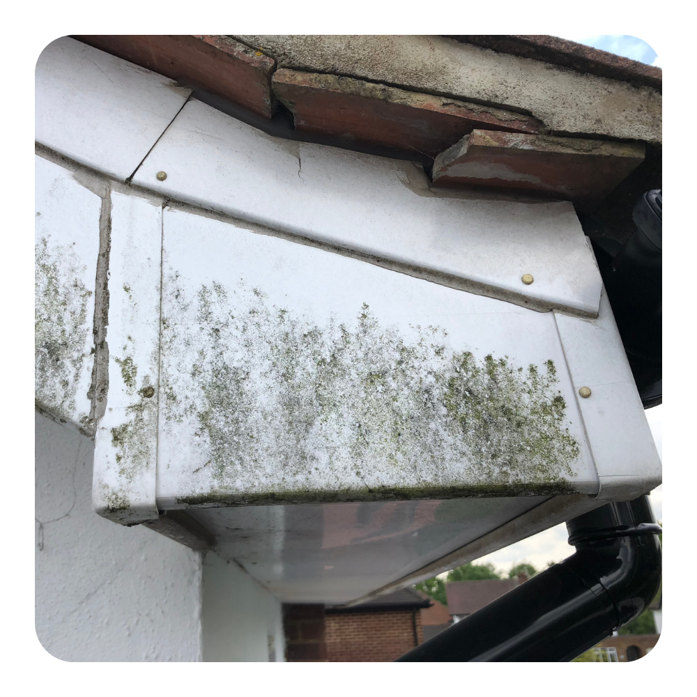 gutter cleaning st albans, gutter cleaning hertfordshire, gutter cleaning herts